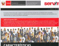 caracteristicas servicio civil peruano